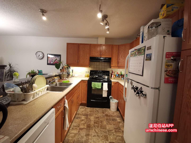厨房冰箱洗碗机都是新换的